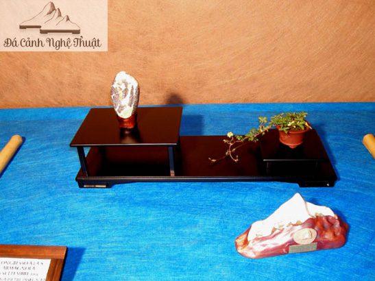 Giải Nhất loại Kiểu thức bề mặt của Ô.Carlo Laghi